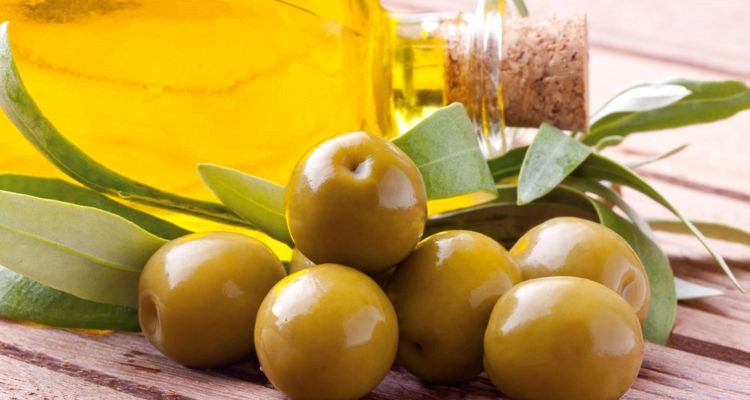 ruta del olivo