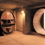 Caminos del Vino: Cavas de Don Arturo