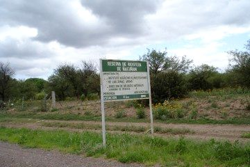 Reserva de Biosfera de Ñacuñan