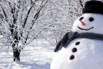 Nieve mendocina