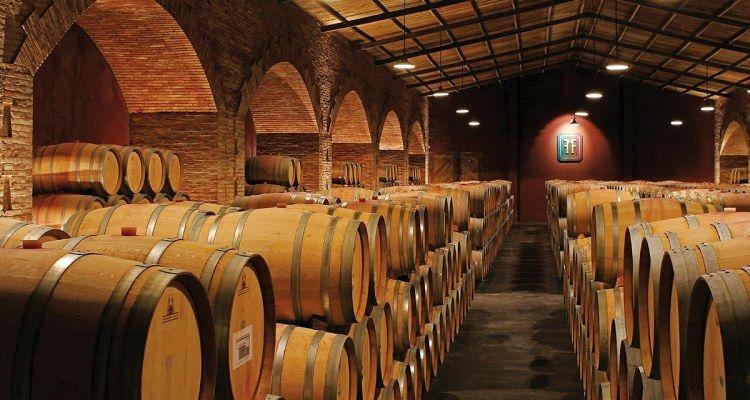 Maipu capital del vino
