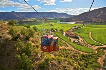 Vinos de Mendoza y Chile