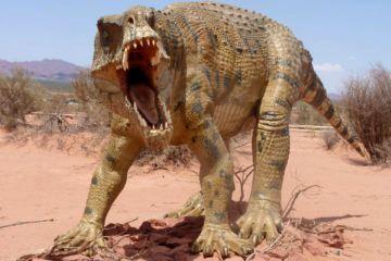 3 La ruta de los diinosaurios