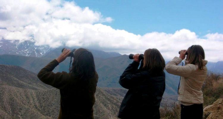 Avisaje de aves en Mendoza