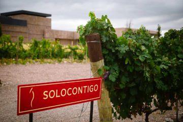 4 Bodega Solocontigo
