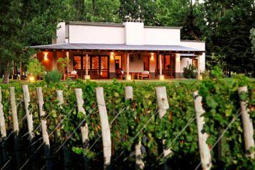 Algodon Wine Estate - San Rafae