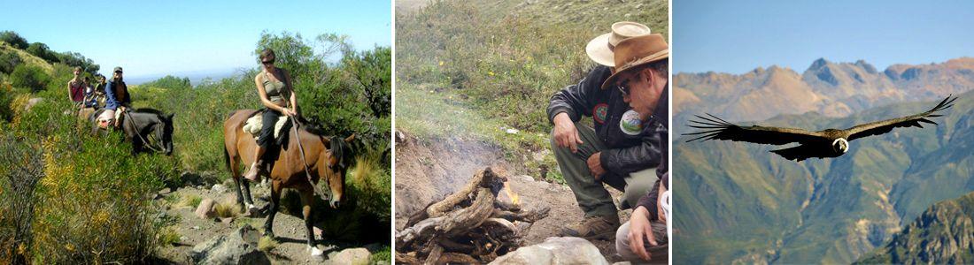 Cabalgata en la montaña de Mendoza