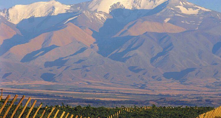 Postal de la Cordillera - Valle de Uco