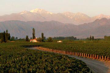 Paisaje de Mendoza