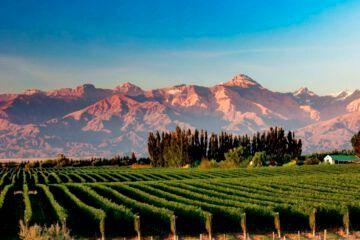 Mendoza es el destino más elegido para turismo cuando acaben las restricciones