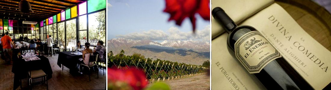Vino Argentino: Bodegas de Mendoza