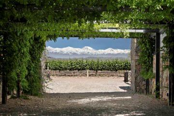 Caminos del vino de Mendoza