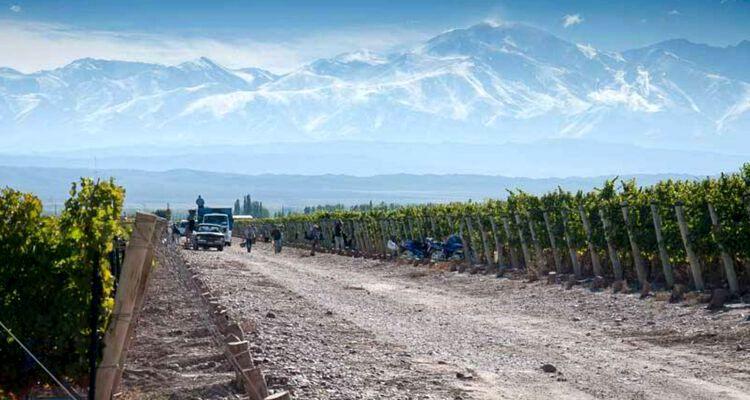 Las bodegas el turismo y el paisaje de la vid y el vino en Mendoza