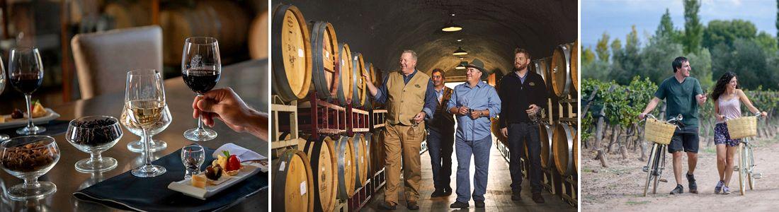 Los caminos del vino en Mendoza