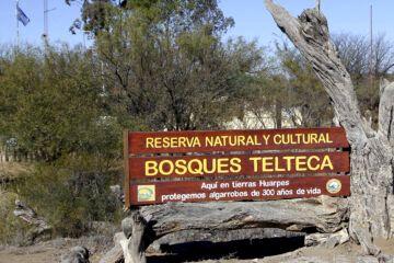 Ingreso a la Reserva Bosque Telteca